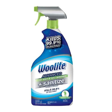 Woolite 11521 Stains & Odor Remover With Sanitize, 22 Oz