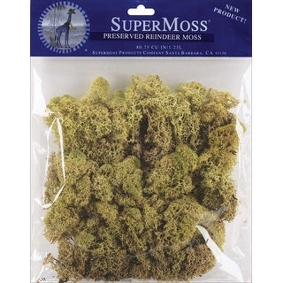 Reindeer Moss 2oz-Moss Green