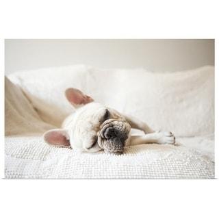 """French Bulldog sleeping on sofa"" Poster Print"
