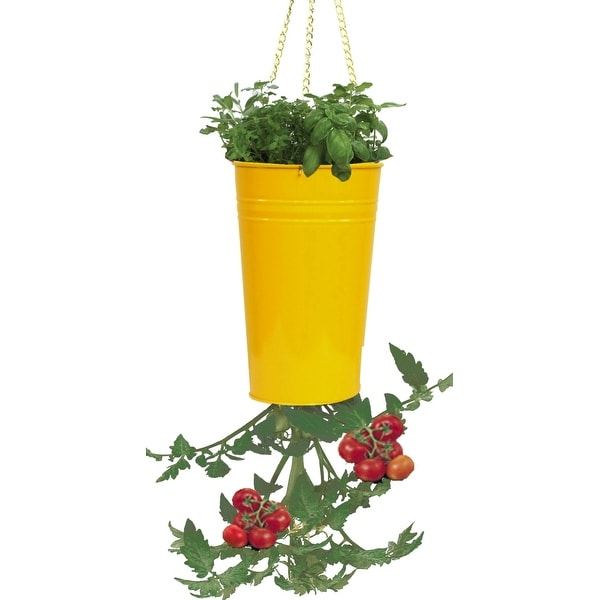 Houston International Trading 8398E SAFF Enameled Galvanized Upsidedown Tomato Pepper Hanging Planter Saffron