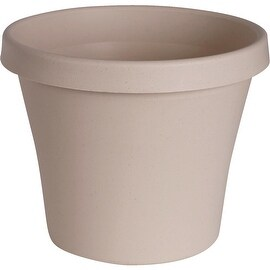 "Bloem 6"" Peprstone Poly Pot"