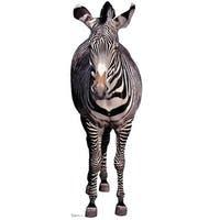 Advanced Graphics 814 Zebra Life-Size Cardboard Stand-Up