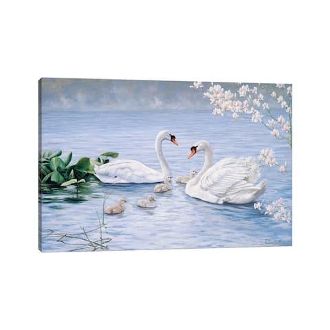 "iCanvas ""Proud Swan Family"" by Peter Motz Canvas Print"