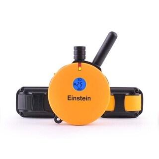 E-Collar Technologies Einstein ET-402TS 2 Dog Remote Trainer