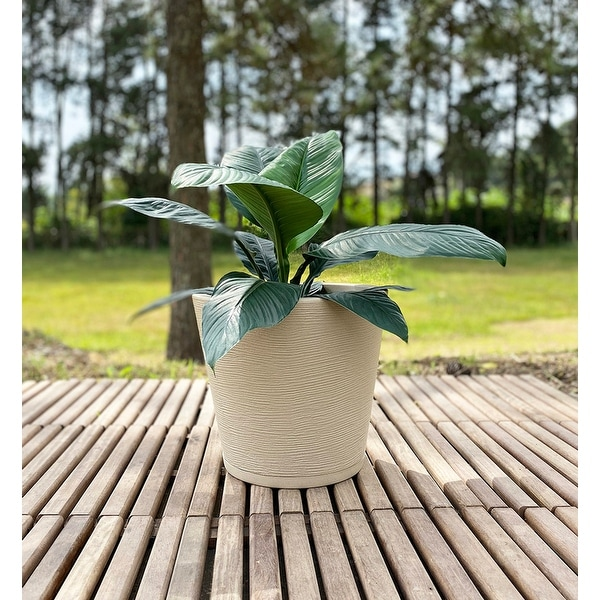 Floridis Genebra Planter. Opens flyout.