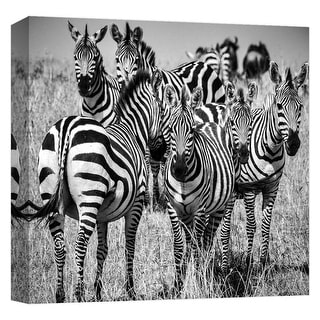 """PTM Images 9-124671  PTM Canvas Collection 12"""" x 12"""" - """"Zebra Stare 2"""" Giclee Zebras Art Print on Canvas"""