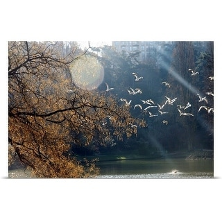 """""""Flight of birds at winter."""" Poster Print"""