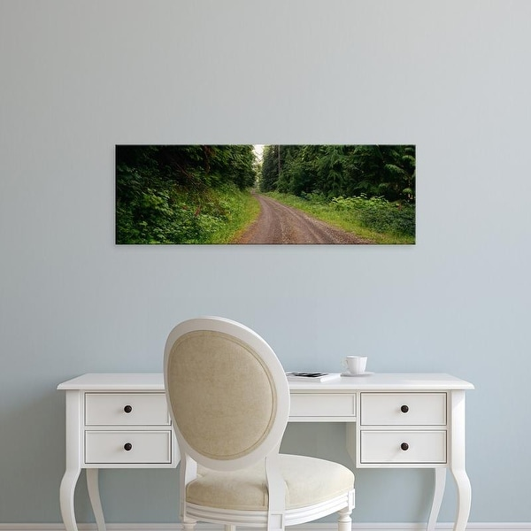Easy Art Prints Panoramic Image 'Road passing through a forest, Olympic National Park, Washington State' Canvas Art