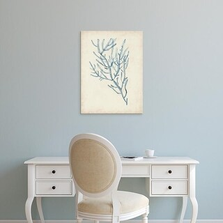 Easy Art Prints Naomi McCavitt's 'Seaweed Specimens III' Premium Canvas Art
