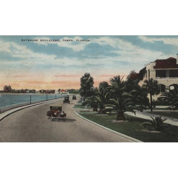 Tampa, Florida - Bayshore Blvd - Lantern Press Art (Art Print - Multiple Sizes)