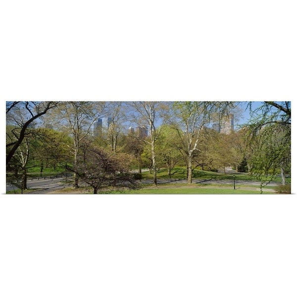 """""""Trees in a park, Central Park West, Central Park, Manhattan, New York City, New York State"""" Poster Print"""
