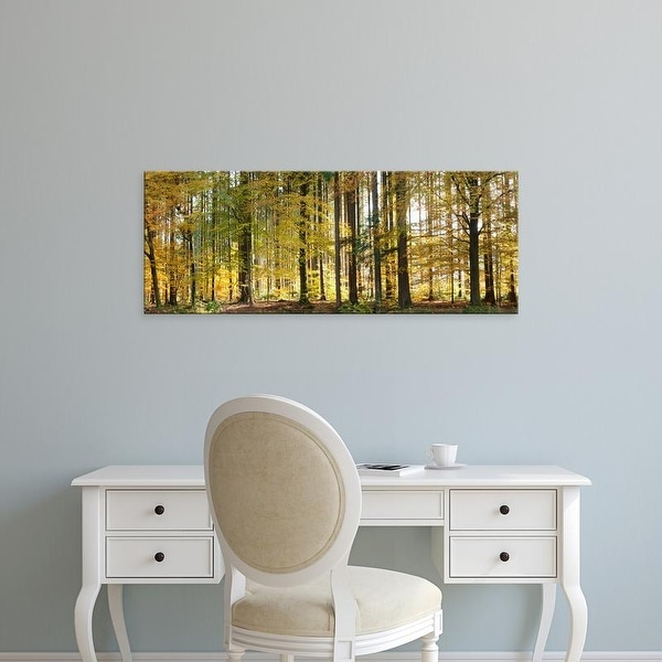 Easy Art Prints Panoramic Images's 'Trees in autumn, Hohenlohe, Baden