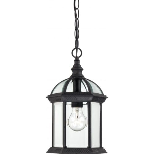 Nuvo Lighting 60/4979 Boxwood Single-Light Hanging Lantern with Clear Beveled Glass Panels