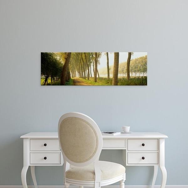 Easy Art Prints Panoramic Images's 'Rural Tree Lined Road Belgium' Premium Canvas Art