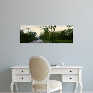Easy Art Prints Panoramic Images's 'Trees along Williams Road, Warrenville, Illinois, USA' Premium Canvas Art