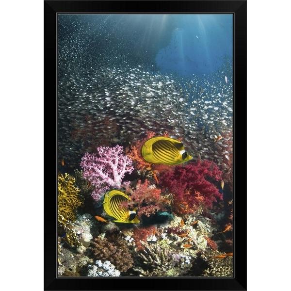 """""""Coral reef scenery"""" Black Framed Print"""
