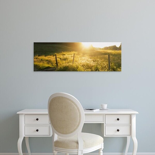 Easy Art Prints Panoramic Images's 'Plants in a forest, Dodgeville, Iowa County, Wisconsin, USA' Premium Canvas Art
