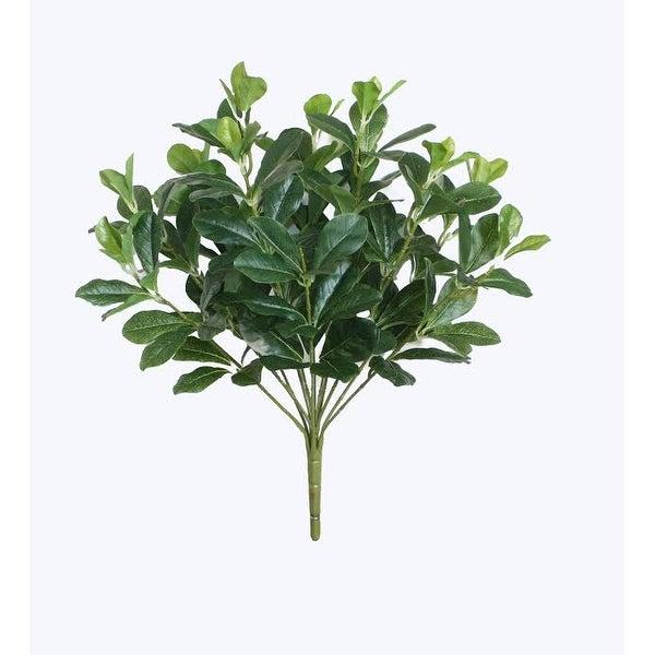 "18"" Decorative Artificial Green Two Tone Polyscias Floral Bush"
