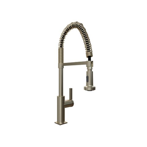 NewAge Products Coiled Pull-Down Double Action Spray Kitchen Faucet