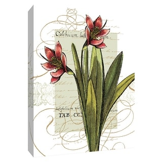 """PTM Images 9-154200  PTM Canvas Collection 10"""" x 8"""" - """"Florilegium III"""" Giclee Flowers Art Print on Canvas"""