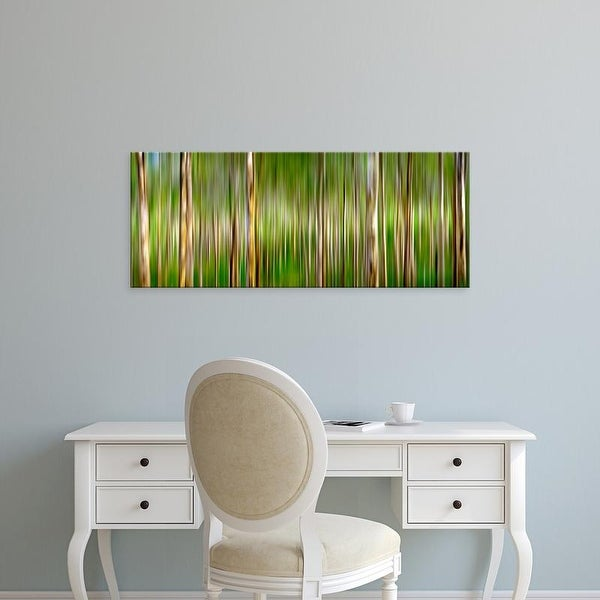 Easy Art Prints Panoramic Image 'trees in forest, Boranup Karri Forest, Western Australia, Australia' Canvas Art