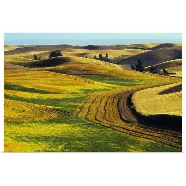 """Patterns in farm fields, rolling hills of Palouse region, Washington"" Poster Print"