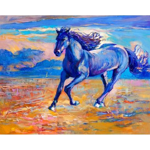 Designart 'Blue Horse Galoping Over The Prairie' Farmhouse Framed Canvas Wall Art Print