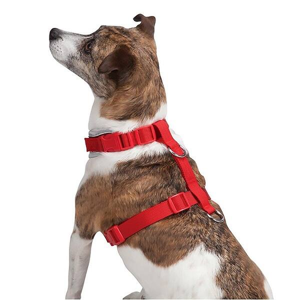 X-Small Casual Canine Mesh Dog Harness Red