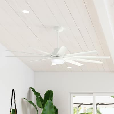 """Hunter 72"""" Overton Damp Rated Ceiling Fan with LED Light Kit and Wall Control"""