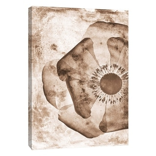 "PTM Images 9-105792  PTM Canvas Collection 10"" x 8"" - ""Sepia Flower Inversions 1"" Giclee Flowers Art Print on Canvas"