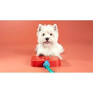 Viatek Pawcet Pet Fountain - Pressure Pedal Activated Pet Waterer for Dogs & Cats