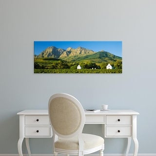 Easy Art Prints Panoramic Image 'Vineyard, Babylons Torren Wine Estates, Paarl, Cape Town, South Africa' Canvas Art
