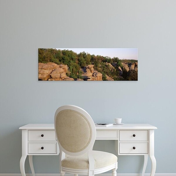 Easy Art Prints Panoramic Image 'Trees, Garden of the Gods Wilderness, Shawnee National Forest, Illinois' Canvas Art