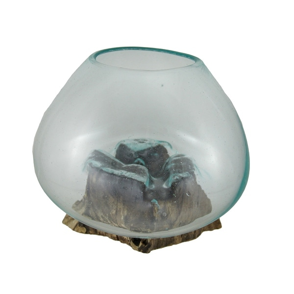 Glass On Teak Driftwood Decorative Vaseplant Terrarium Free