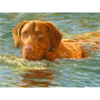 """""""On Mission"""" A Limited Edition Chesapeake Bay Retriever Print