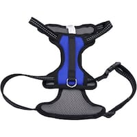 06489BLM Coastal Reflective Control Handle Harness-Blue Medium