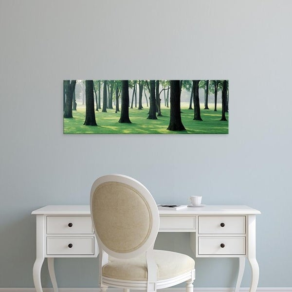 Easy Art Prints Panoramic Images's 'Trees in a lawn, British Columbia, Canada' Premium Canvas Art