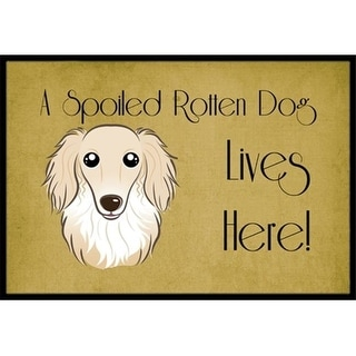 Carolines Treasures BB1460JMAT Longhair Creme Dachshund Spoiled Dog Lives Here Indoor & Outdoor Mat 24 x 36 in.