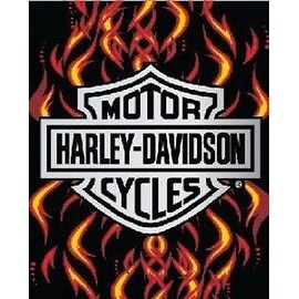 Licensed Harley Davidson Motor Cycles Bath Beach Towel 54X68 SOA