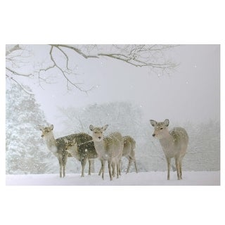 "Large Fiber Optic Lighted Winter Woods with Deer Canvas Wall Art 23.5"" x 15.5"" - N/A"