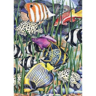 """Mini Color Pencil By Number Kit 5""""X7""""-Tropical Fish - tropical fish"""