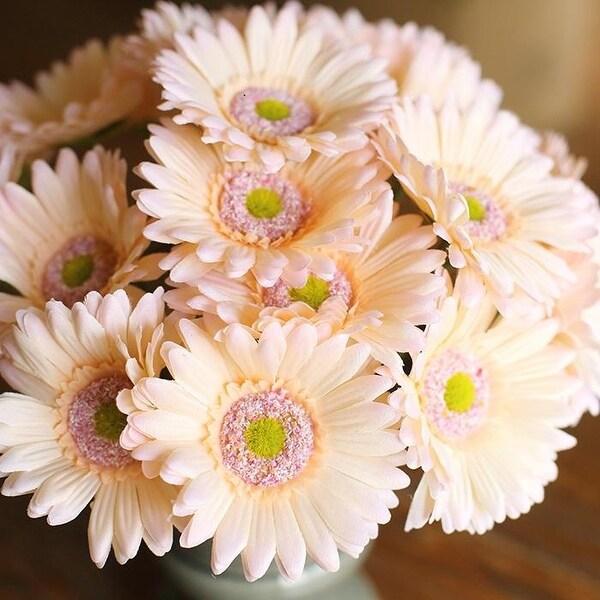"RusticReach Artificial Daisy Bouquet 10"" Tall"
