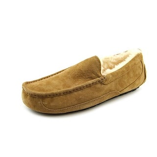 Ugg Australia Ascot Men Round Toe Suede Brown Slipper