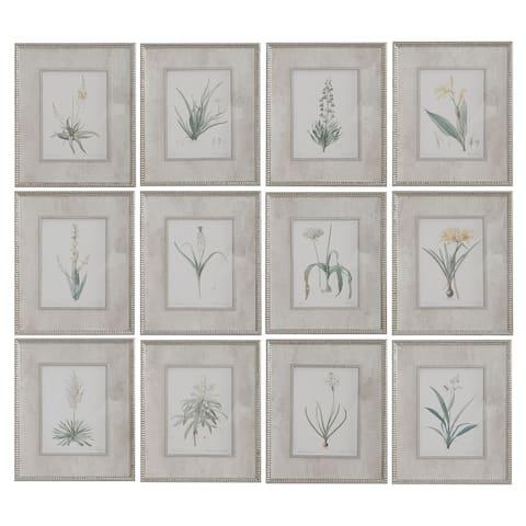 Uttermost Spring Florals Framed Prints (Set of 12)