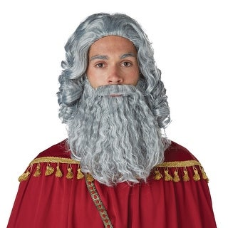 Mens Biblical King Grey Wig and Beard - standard - one size