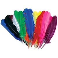 Assorted - Value Pack Quill Feathers 25/Pkg