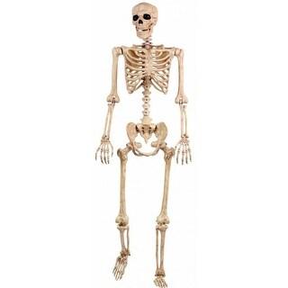 Seasons 18965 Life Size Realistic Pose-N-Stay Halloween Skeleton, 5'
