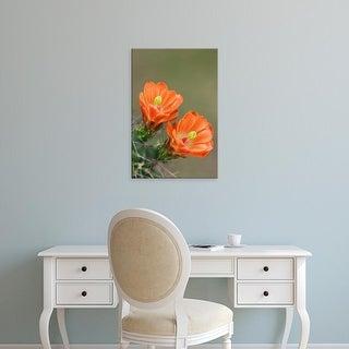 Easy Art Prints Rolf Nussbaumer's 'Claret Cup Cactus' Premium Canvas Art
