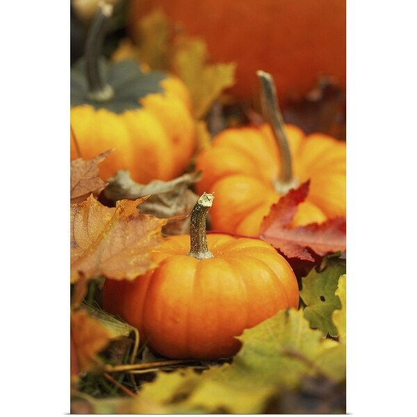 """""""Small pumpkins and fall leaves"""" Poster Print"""