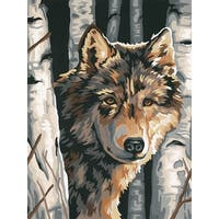 "Paint Works Paint By Number Kit 9""X12""-Wolf Among Birches"